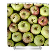 Little Green Apples Shower Curtain