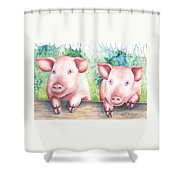 Little Piggies Shower Curtain