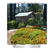 Little Rustic Cabin In A Clearing In The Woods Shower Curtain
