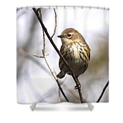 Little Speckled Bird Shower Curtain
