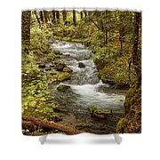 Little Zig Zag Stream Shower Curtain