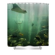 Live Coral Reef Shower Curtain