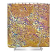 Living Candida Albicans Shower Curtain