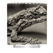 Lizard In Bw Shower Curtain