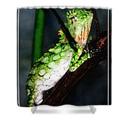 Lizard With Oil Painting Effect Shower Curtain