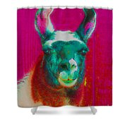 Llama Of A Different Color Shower Curtain