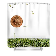 Lm Of Entamoeba Cyst Shower Curtain