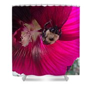 Loaded Bee Shower Curtain