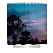 Loblelly Pine Silhouette Shower Curtain by DigiArt Diaries by Vicky B Fuller
