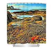 Lobster Fest Shower Curtain