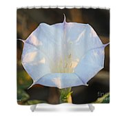 Loco Weed Flower Shower Curtain