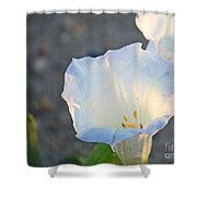 Loco Weed Flowers 1 Shower Curtain
