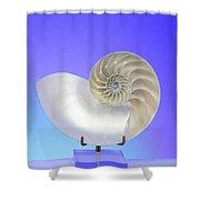 Logarithmic Spiral Shower Curtain