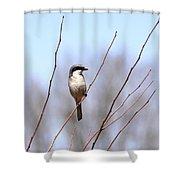 Logger Shower Curtain