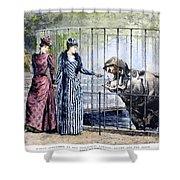 London Zoo, 1891 Shower Curtain