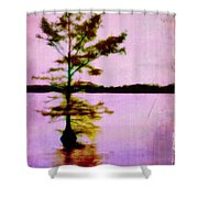 Lone Cypress Shower Curtain by Judi Bagwell