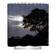 Lone Oak 1 Shower Curtain