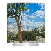 Lone Pine At Half Dome Shower Curtain