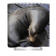 Lone Sea Lion Shower Curtain by Jack Zulli
