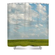 Lone Trees Shower Curtain