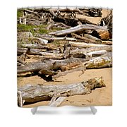 Lonely Driftwood Shower Curtain