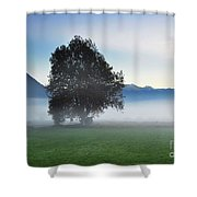 Lonely Tree In The Fog Shower Curtain
