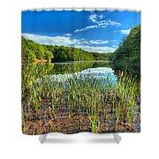 Long Branch Lake Marsh Shower Curtain by Adam Jewell