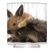 Long-haired Guinea Pig And Young Rabbit Shower Curtain