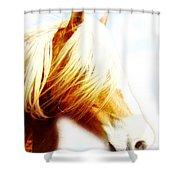 Long Mane Dreamy Shower Curtain