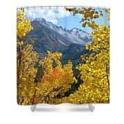 Long's Peak And The Keyboard Of The Winds Amidst Aspen Gold Shower Curtain by Margaret Bobb