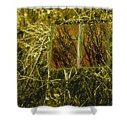 Look And Seek Shower Curtain