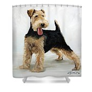 Looking For Fun Shower Curtain