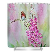 Looking For Seeds Shower Curtain