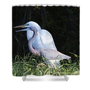 Looking For Sticks Shower Curtain