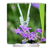 Looking Into Butterfly Eyes Shower Curtain