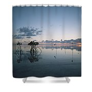 Looking Out To Sea Past Mangrove Shoots Shower Curtain