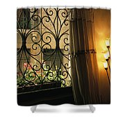 Looking Through Iron Filagree Window Shower Curtain