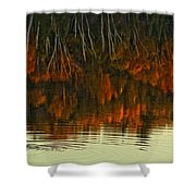Loon In Opeongo Lake With Reflection Shower Curtain