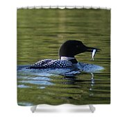 Loon With Minnow Shower Curtain