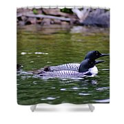 Loons With Twins 3 Shower Curtain