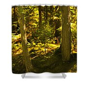 Lord Of The Rings Glacier National Park Shower Curtain