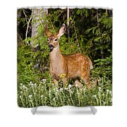 Losing The Spots Shower Curtain