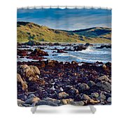 Lost Coast In Winter Shower Curtain