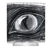 Lost In The Eye Of Your Past Shower Curtain