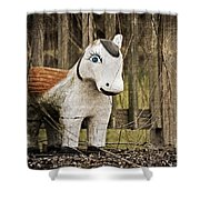 Lost Pony Shower Curtain