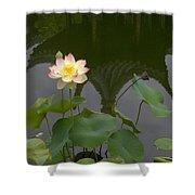 Lotus 2 Shower Curtain