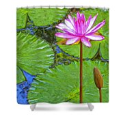 Lotus Blossom And Water Lily Pads Shower Curtain