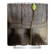 Lotus Offering Shower Curtain
