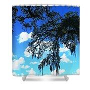 Louisiana Skyscape Shower Curtain