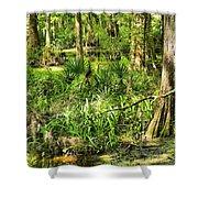Louisiana Wetland Shower Curtain